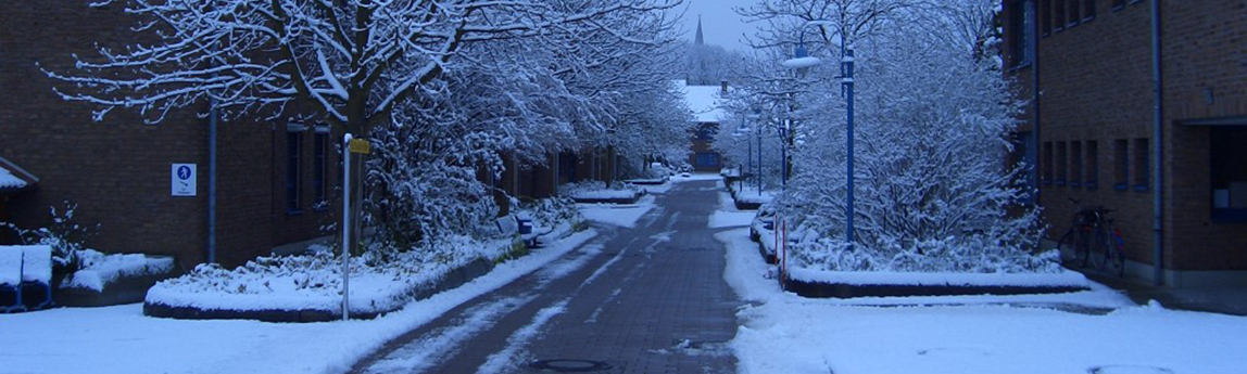 start_winter
